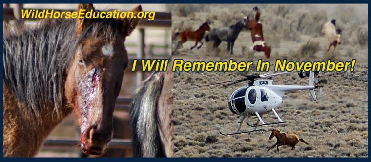 I WILL Remember In November!