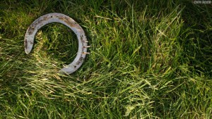 Horseshoe in the grass